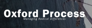 """Mikael Wahlgren is now engaged as a Funding and Strategic Advisor to assist Oxford Process' promote their """"BUSINESS PLAN – Partner in Peacemaking"""""""